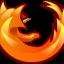Firefox Pioneer